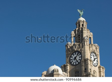 Liverpool Liver Building With A Single Seagull.