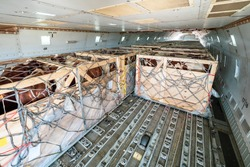 Livestock in wooden boxes secured by nettings being shipped on the main deck cargo hold of a Jumbo Jet freighter aircraft