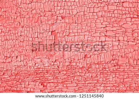Living Coral color of the Year 2019 Old cracked paint on wooden table. Weathered Texture, rustic background.  #1251145840