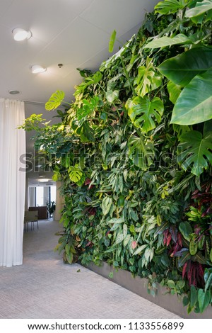 Living green wall with flowers and plants, vertical garden indoors under artificial lighting