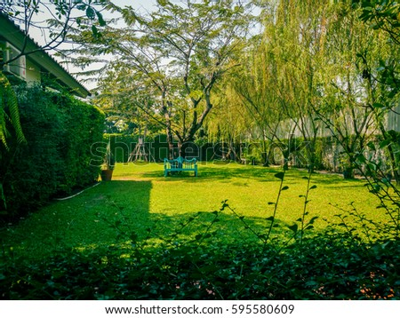 Living, playground green, background green, nature green, landscape green #595580609