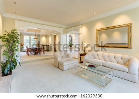 Living room in a luxury house