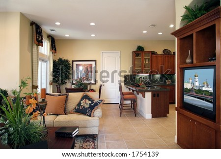 Living room of a new modern home Image on TV was replaced with my own image