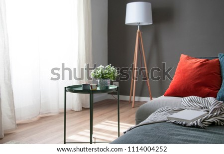 Living room: sofa, nordic floor lamp and home decorations on table