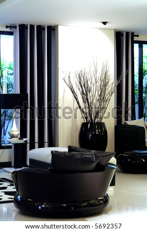 Living room waiting room with elegant modern black and white design