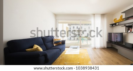 Living room with blue sofa, yellow carpet and bright window. Nobody inside #1038938431