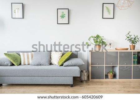 Living room with grey sofa, decorative pillows and bookshelf