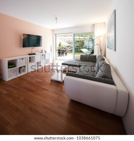 Living room with window and garden view. Gray designer sofa. Nobody inside #1038661075