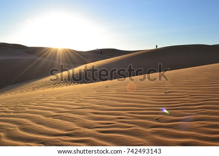 Liwa Desert #742493143