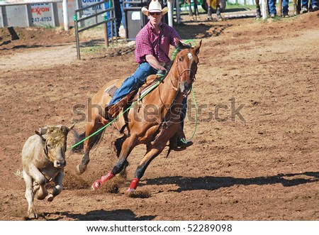LLANO, TEXAS - APRIL 18: Cowboy roping  a steer at the Llano Crawfish Open Team Roping Competition April 18, 2008 in Llano, Tx.