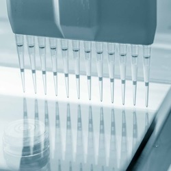 load DNA sample in electrophoresis device