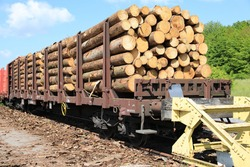 Loaded wagon with timber in Sauerland, Germany