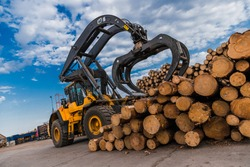 Loading equipment for logging. Log loader for timber, logs. Log loader moves stack of pine logs. Lumber industry. Woodworking factory. Firewood cut tree trunk logs stacked prepared.