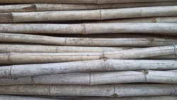 Loads of Bamboo wood Closeup Photos Bamboo wood is a type of construction material and Bamboo poles are used in Agricultural Fields of Tomato and others