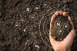 Loamy soil that is rich in man's hands and has iconic technology about soil nutrients that are essential to cultivation.
