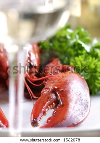 lobster and whitewine