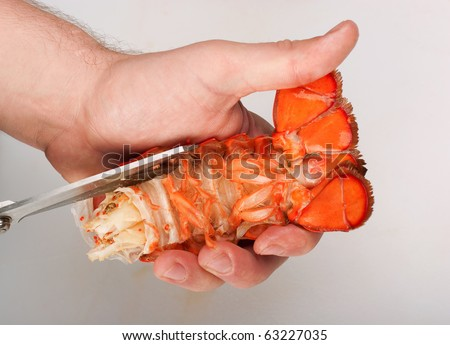Lobster, Cutting Of Tail By Cook Stock Photo 63227035 : Shutterstock