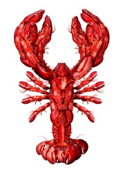 Lobster symbol isolated on a white background as a group of fresh seafood or shellfish food concept as a complete red shell crustacean in an overhead view isolated on a white background.