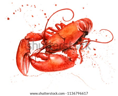 Lobster watercolor with paint splashes.