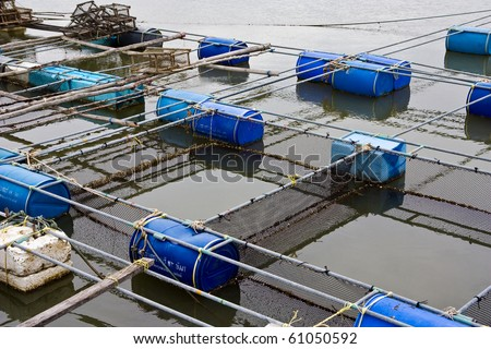 Fish  Farm on Ocean Sea Fish Farm Plant Nature And Find Similar Images