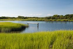 Local inlet, marsh