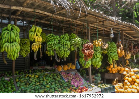 Local market for agricultural products. A showcase with a variety of exotic fruits and bunches of bananas. Asia, Sri Lanka.