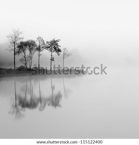 Loch Ard trees in the mist reflecting on the water