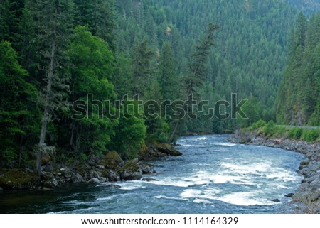 Lochsa River and forest, Selway Bitterroot Wilderness, Idaho, USA