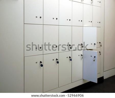 locker searches in schools essay