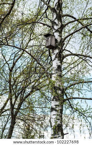 lodge for birds attached on a birch