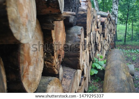 log cabins in the forest #1479295337