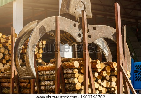 Log loader at sawmill. Bunching grapples moving bunches of logs onto logging truck
