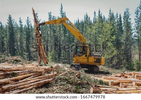 Logging  Equipment Forestry Industry Machine  Stock photo ©