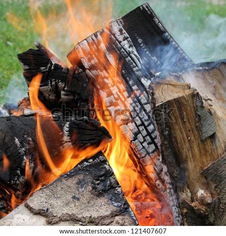 Logs and fire - closeup shot of camp fire flames