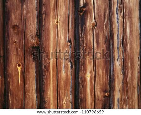 Logs, close-up