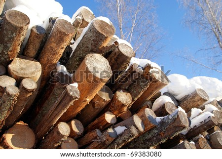 Logs for Wood Fuel in Winter