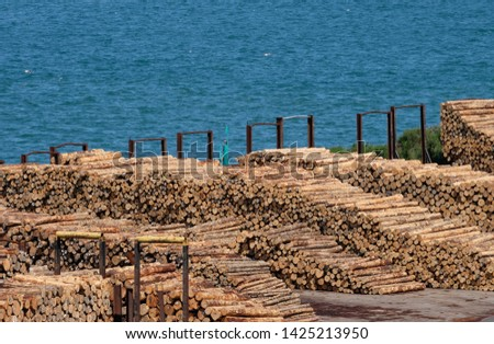 Logs piled up on Port Chalmers dockside ready for transportation #1425213950