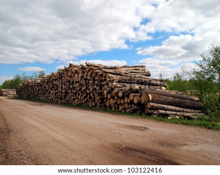 Logs stack near the road against sky background