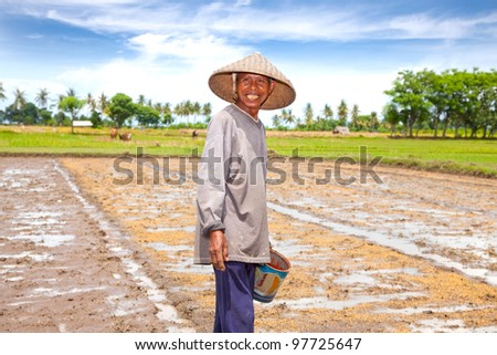 LOMBOK,INDONESIA- FEBRUARY 2: Local farmer sowing rice on February 2,2012 in Lombok, Indonesia. The farmers had several varieties of rice that served a different purpose.
