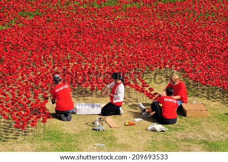 LONDON - AUGUST 7. Volunteers installing the 888,246 ceramic poppies on August 7, 2014 to commemorate the First World War British and colonial military fatalities, located at the Tower of London, UK.