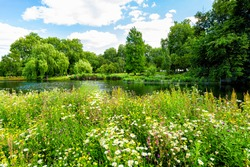 London Saint James Park green foliage and trees in sunny summer with many flowers by pond river water landscape