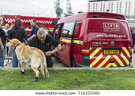 LONDON, UK - OCTOBER 20: A fire brigade dog is prepared to demonstrate its skills in a rescue challenge. Fire fighters met for the World rescue challenge. October 20, 2012 in London.
