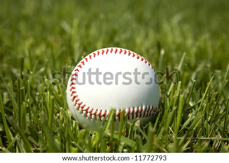 lone baseball laying in the grass on a bright sunny day