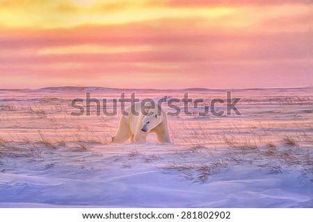 Lone polar bear on Arctic,tundra as the sun sets,digital oil painting.