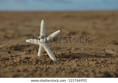 Lone starfish with two wedding bands sitting on a deserted sandy tropical beach at sunset