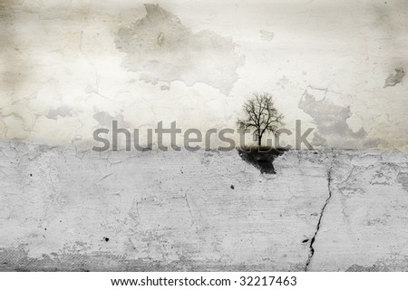 Lone tree stands on horizon in empty white field. Composite image abstract art creation. - stock photo