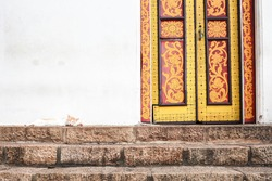 Lone white cat on the steps by the yellow painted temple doors