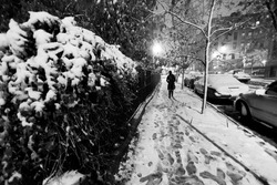 Lone woman walking on the snow covered pavement of a Harlem street on a freezing snowstorm night.