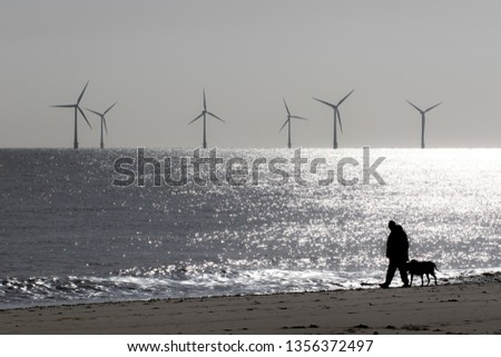 Loneliness and solitude. Peaceful landscape image of lonely person walking a dog. Mans best friend. Wind farm turbines on the sea beach horizon. Mindfulness and contemplation with tranquil background #1356372497