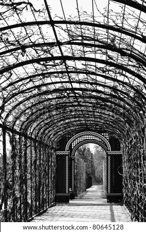 lonely arcade walk in a beautiful garden, black and white